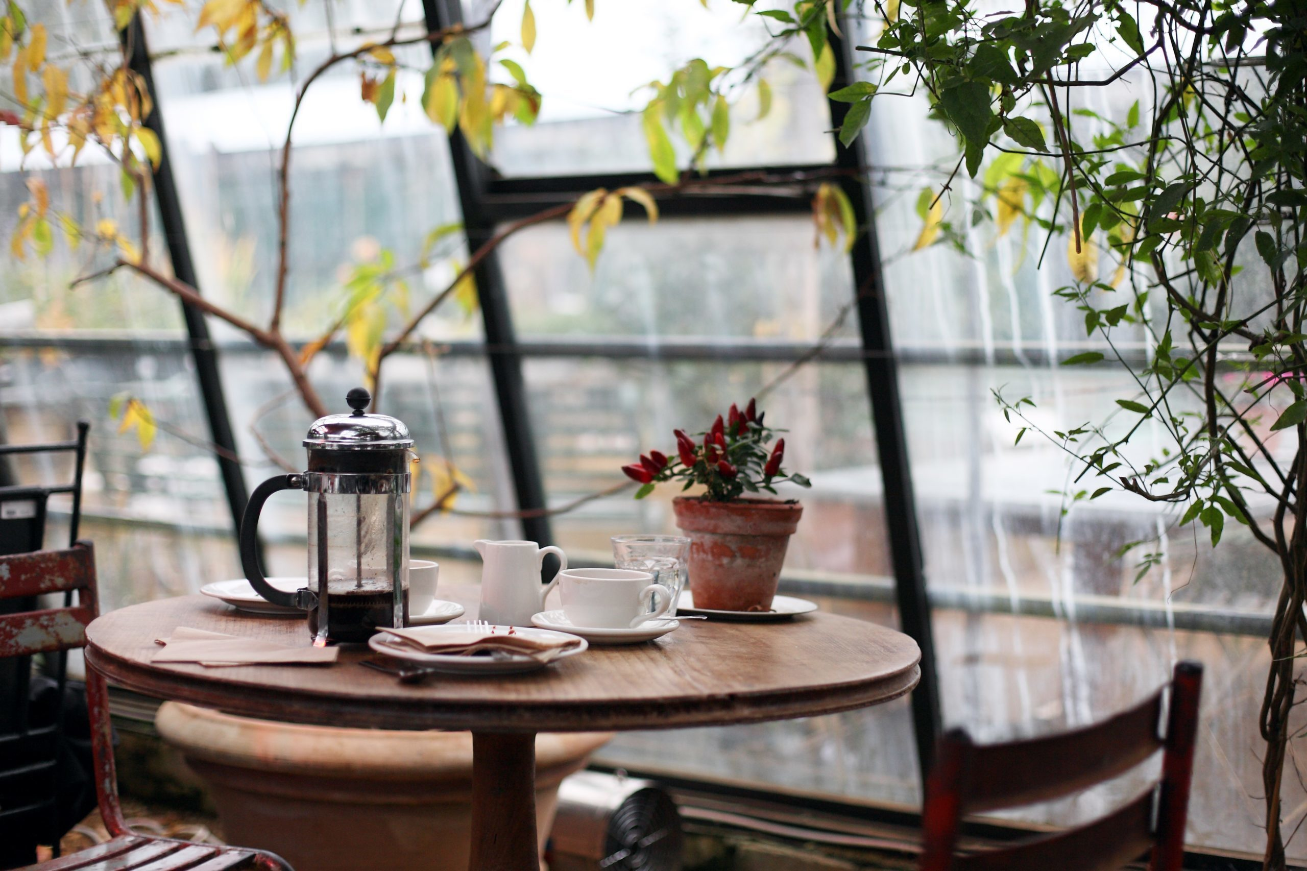 Is french press coffee better