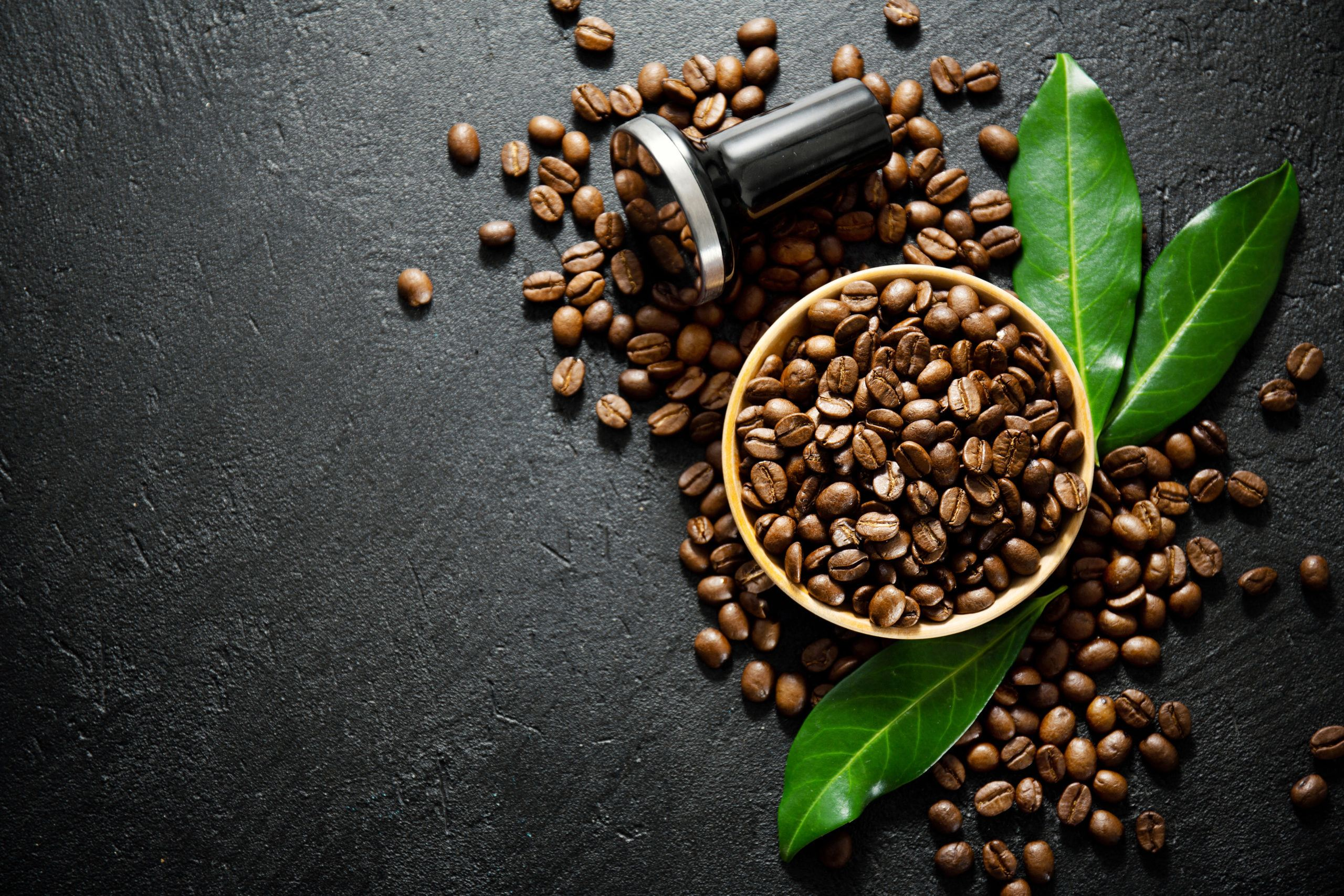 difference between arabica and robusta