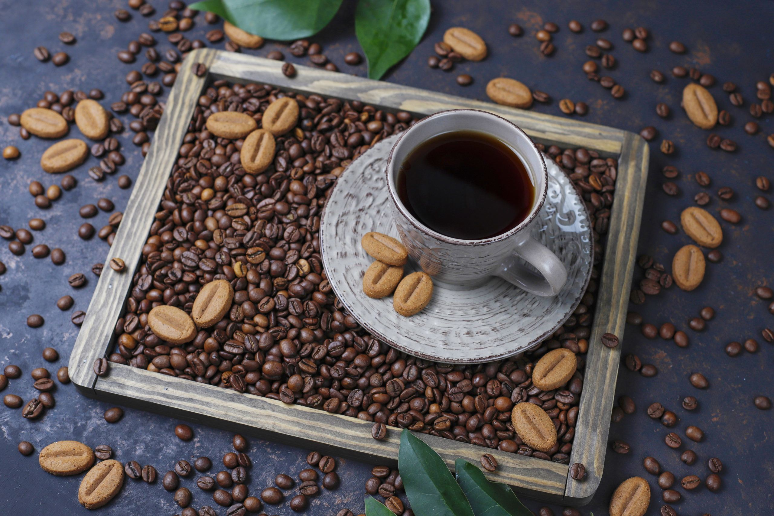 what is arabica coffee bean