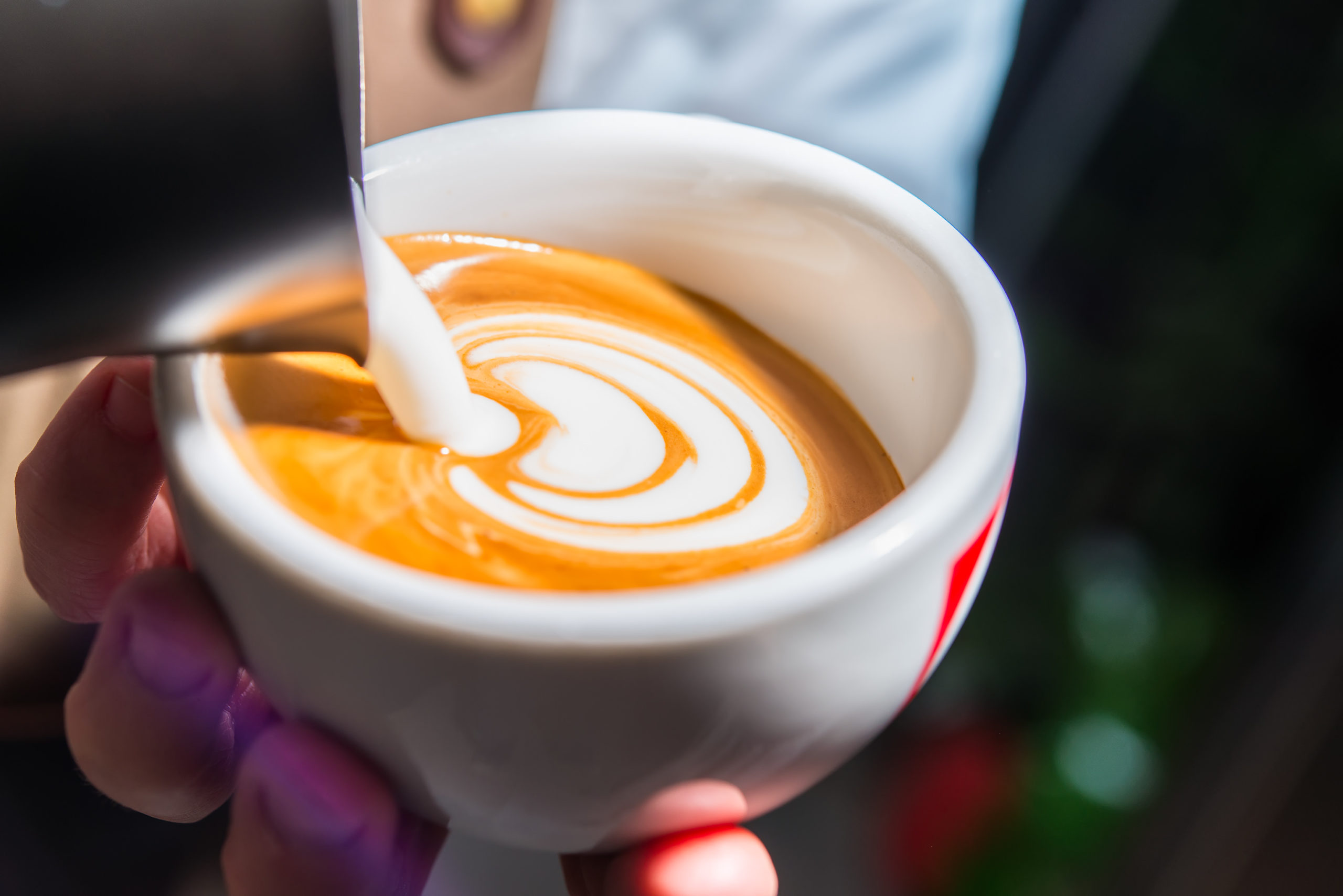 How to Choose from Frothed or Steamed Milk