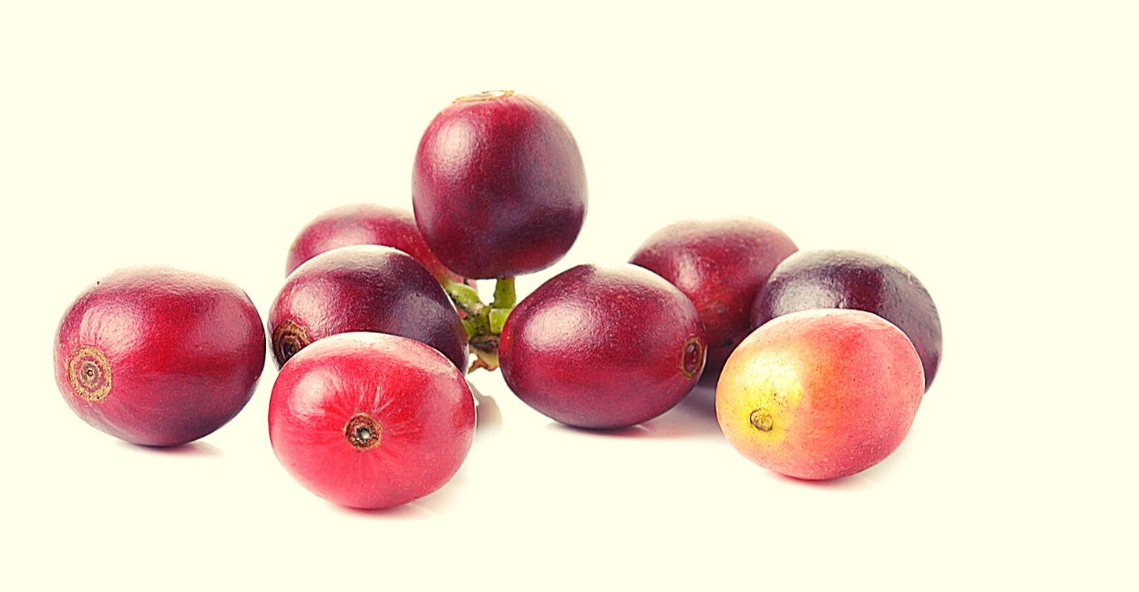 interesting things on what to do with coffee cherry